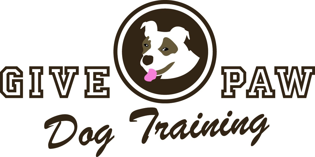 give paw dog training llc | south orange nj dog training | maplewood ...